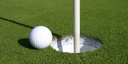 33. hole in one